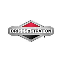 Pièces Briggs & Stratton